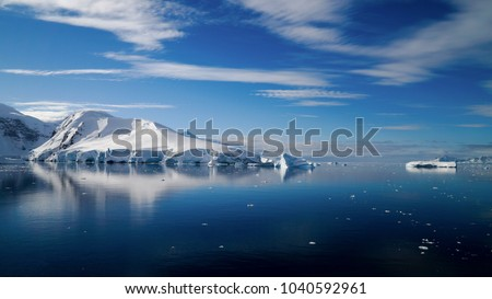 Icebergs reflecting in the calm Paradise Bay in Antarctica.