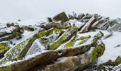 Iced moss-covered rocks under a thin layer of snow and ice.