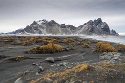 Iceland Landscape : Vestrahorn