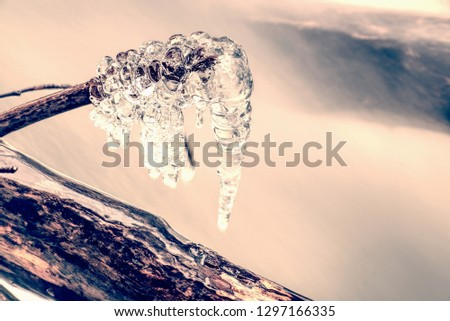 Icicles hang above dark freeze water of mountain stream. Winter stream of the river