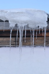 Icicles on the roof of the barn. A vertical image. About a dozen transparent icicles on a background of wooden beams and a white wall. There are snow and blue sky at the top of the picture.