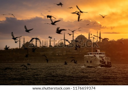 Iconic Istanbul Old Town silhouette and the ship and seagulls during sunset