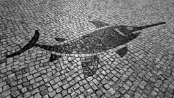 Iconic portuguese pavement (cobble stones) made with black and white stones, drawing the shape of a big fish detail, tuna fish motif. Refined pattern in black and white texture for background.