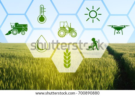 Icons and field on background. Concept of smart agriculture and modern technology - Shutterstock ID 700890880