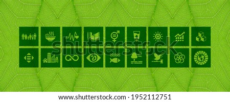 Icons for Sustainable Development sketched inside a organic leave. Corporate social responsibility icons. Concept design to perform sustainable development and to create a sustainable world.