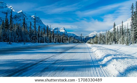 Icy road with fir full of snow all along the road, Canada