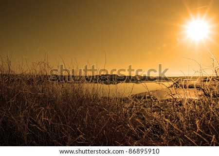 icy twigs and branches in the snow against a orange sun rising in river and sky background