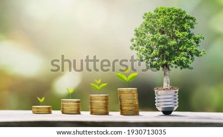 idea of money growing step with tree. concept finane and accounting. plant growth on coins Imagine de stoc ©