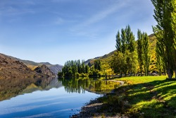 Ideal place for a picnic. Cypress alley, blue lake and picturesque hills. New Zealand Southern Alps. The surroundings of the city of Cromwell. The concept of ecological, landscape and photo tourism