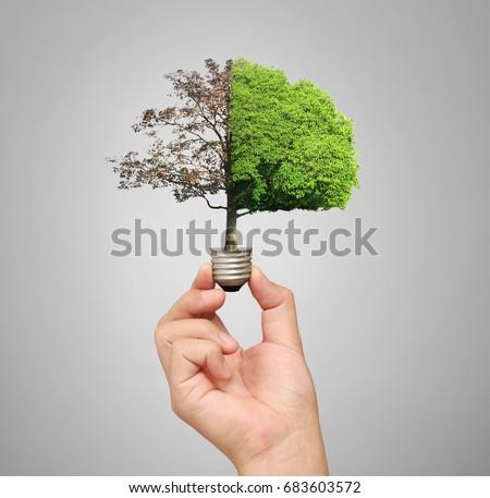 ideas, energy saving light bulb #683603572