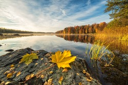 Idyllic autumn lake scenery with maple leaf on the rock
