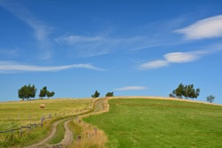 Idyllic countryside scenic meadow, dirt road and sky summer view. Polish village landscape.