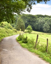 Idyllic footpath through fields and forest, nature background. Country road or street through an idyllic landscape in summer. Forest, fields and blue sky with copy space.