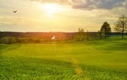 Idyllic Golfcourse - backlite shot