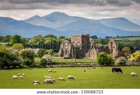 Idyllic Irish Landscape Photo stock ©