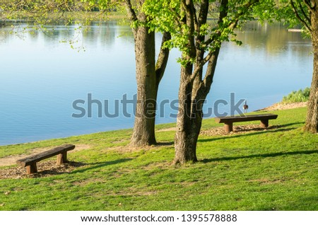 Idyllic lake with recreational facilities and recreational area in the spring with Canada goose on the shore #1395578888