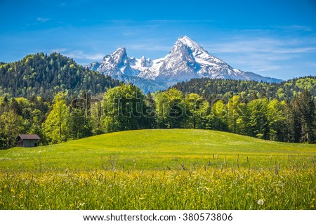 Idyllic landscape in the Alps with fresh green meadows, blooming flowers, typical farmhouses and snowcapped mountain tops in the background, Nationalpark Berchtesgadener Land, Bavaria, Germany
