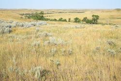 Idyllic Little Missouri National Grassland in North Dakota, USA