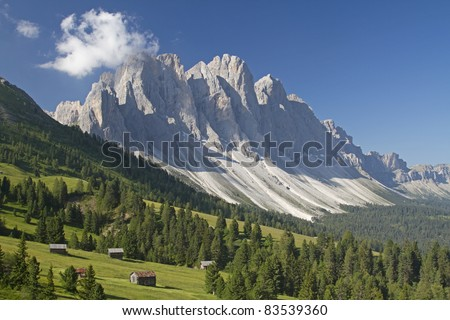 Idyllic pastures before the massif of the Geissler