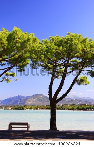 idyllic patio under the pine trees on Lake Garda