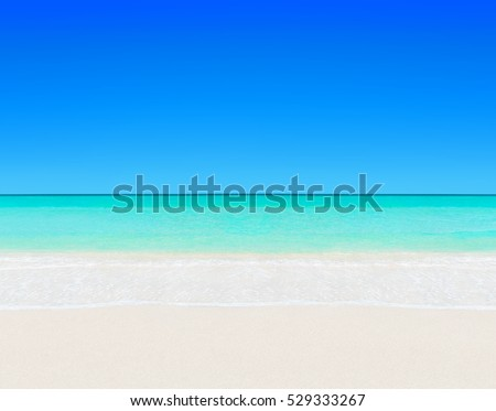 Idyllic perfect tropical white sandy beach and turquoise clear ocean water - summer vacation natural background with blue sunny sky #529333267