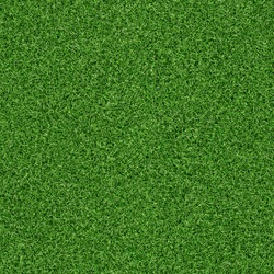 idyllic  seamless grass texture