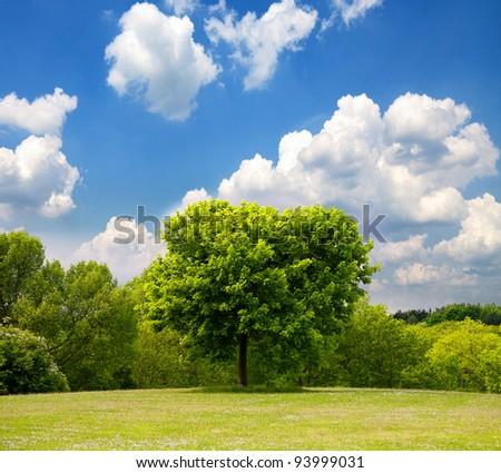 Idyllic spring landscape