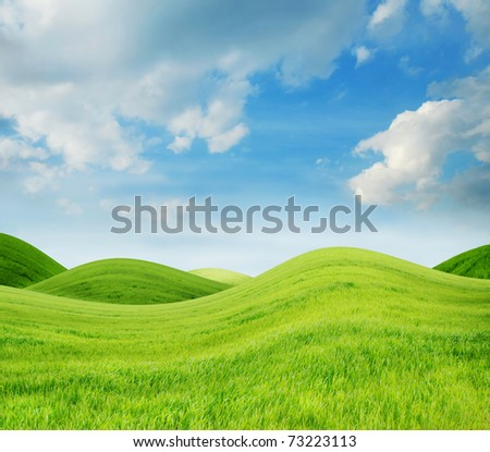 Idyllic spring landscape with fresh green grass - stock photo