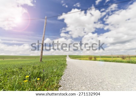 Idyllic summer field with dandelions and sun in blue sky, lens flare added
