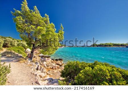Idyllic turquoise beach in Croatia, Island of Murter, Dalmatia region