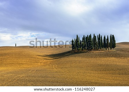 Idyllic Tuscan landscape  near Pienza, Vall d'Orcia Italy, Europe