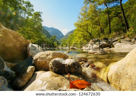 Idyllic valley with mountain river
