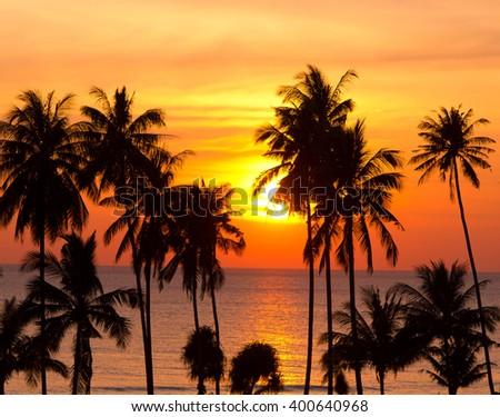 Idyllic Wallpaper Sunset Divine