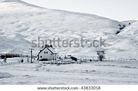 Idyllic Winter Scene - stock photo
