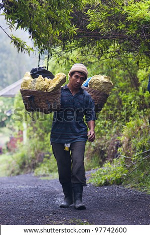 IJEN VOLCANO, INDONESIA - DEC 16: Worker carries sulfur inside Ijen crater on December 16, 2011 in Ijen Volcano, Indonesia. He carries the load of around 60kg to the top of the rip and then 3km down.