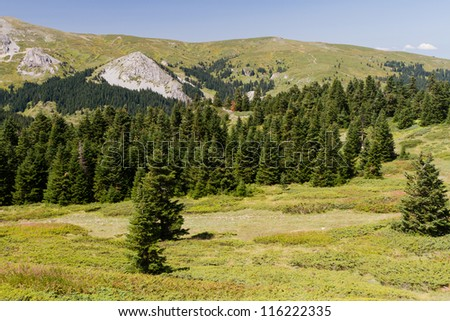 Ilgaz Mountains, Kastamonu, Turkey