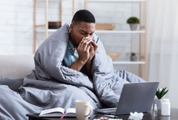 Ill African Man Having Rhinitis Sneezing And Blowing Runny Nose In Paper Tissue Sitting On Sofa At Home, Working Distantly On Laptop. Sinusitis Illness, Cold And Influenza Symptoms.