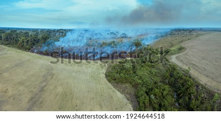 Illegal fire burn forest trees in the Amazon rainforest, Brazil. Aerial view of deforestation area for pasture, livestock and agriculture soy farm. Concept of ecology, environment and climate change.