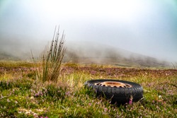 Illegally dumped dumped tyre in rural Ireland.
