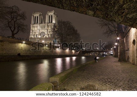 Illuminate Notre-Dame from Paris with Sena in the night