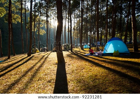 Illuminated blue Camping tent from sunlight with silhouette trees in outdoor #92231281