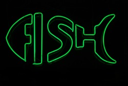 Illuminated neon sign in shape of fish
