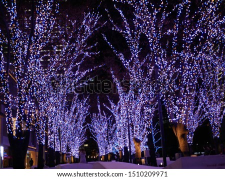 Illuminated trees and city landscape