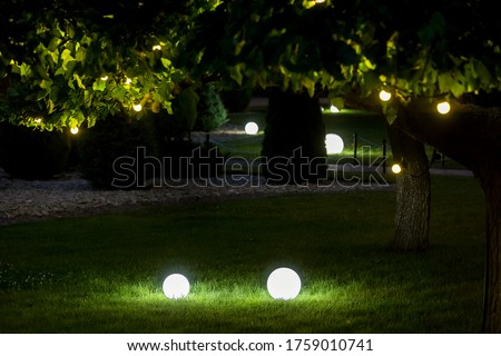 illumination backyard light garden with electric ground lantern with round diffuser lamp with garland of light bulbs on a tree branch with leaves with landscaping, dark illuminate night scene nobody.