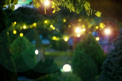 illumination holiday lights glare on garden with electric garland bulbs of warm light glow with round bokeh evening illuminate night scene of outdoor landscaped park with thuja bushes and tree nobody.