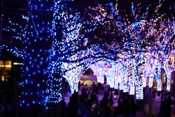 Illuminations light up at Yokohama