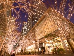 Illuminations on Marunouchi Naka-dori in Tokyo
