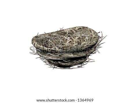 Illustrated & Isolated bird nest
