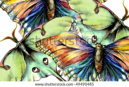 Illustrated Moth and Butterfly Background