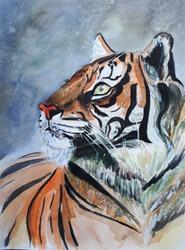 Illustration a wild animal. Big cat - tiger. Watercolor/ Design poster/ Hand draw art. Nature